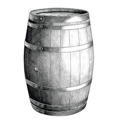 antique engraving oak barrel hand drawing vector image