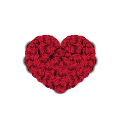 Heart made of Roses vector