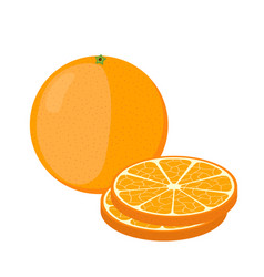 orange and slices cartoon style vegetarian food vector image