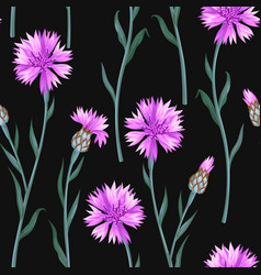 Seamless pattern with colorful cornflowers vector