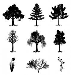 trees narcissus chamomile bush vector image