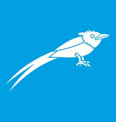 Asian paradise flycatcher icon white vector