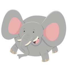 Elephant cartoon animal character vector
