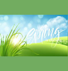 frash spring green grass landscape background with vector image