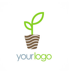seed plant organic logo vector image