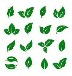 Set green leaf icons vector