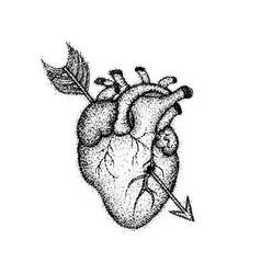 dotwork heart with arrow vector image vector image