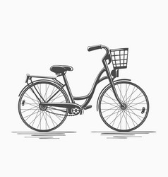 Bike with basket vector