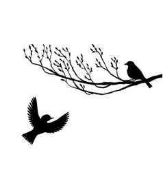 Birds at tree silhouettes vector