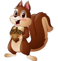 Cartoon funny squirrel holding pine cone vector