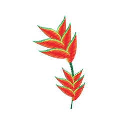 Drawing heliconia flower ornament image vector