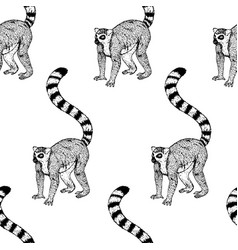 Hand drawn background with lemur seamless vector
