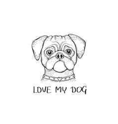 head dog pug with the collar hand-painted vector image