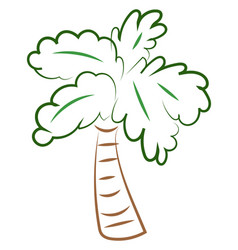 palm tree drawing on white background vector image
