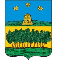 Temnikov City vector image vector image