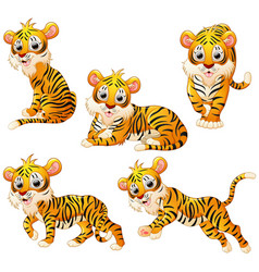 tiger cartoon set collection vector image