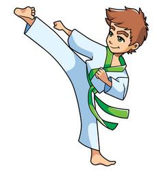 karate kick boy vector image vector image