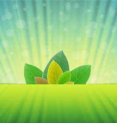 realistic leaves in abstract backgrounds vector image