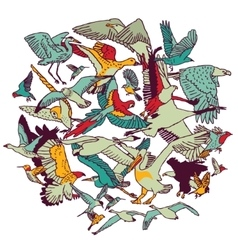 Fly birds round colors isolate on white vector image vector image