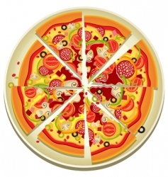 pizza slices on the plate vector image vector image