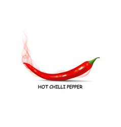red chilli pepper with hot smoke vector image