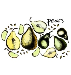 Set of drawing pears vector image vector image