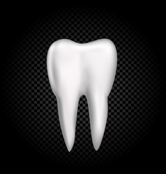 tooth on dark transparent background vector image