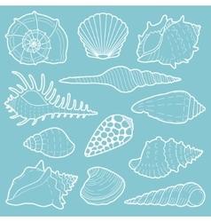 White sea shells icon set vector image
