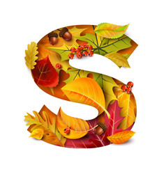 autumn stylized alphabet letter s vector image
