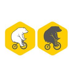 bear on bicycle minimalistic vector image