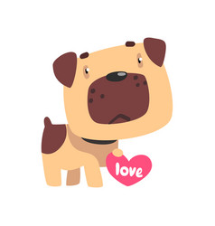 funny pug dog holding pink heart cute valentine vector image