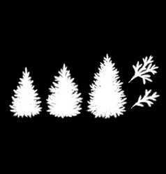 Spruce trees and branches silhouettes vector
