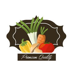 Vegetables premium quality fresh image vector