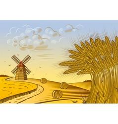Wheat fields landscape vector image