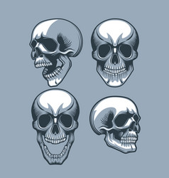 a set four skulls looking in different vector image