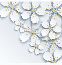background with white sakura flower vector image