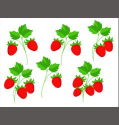 Cartoon berries vector