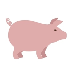 Pig animal farm icon vector
