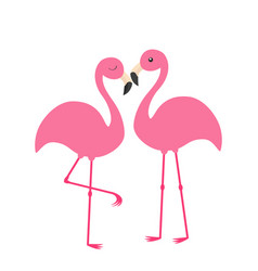 two pink flamingo set exotic tropical bird with vector image