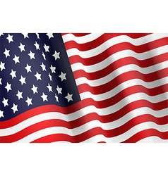 Flag of the USA vector image vector image