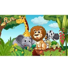 A forest with a group of animals vector image