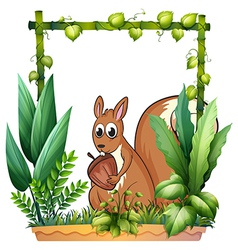 A squirrel with nut vector