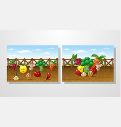 cartoon vegetable garden farm background vector image