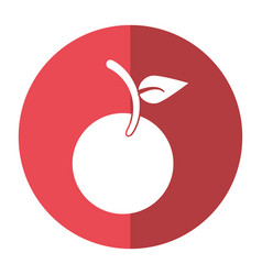 Fruit vegan nutrition icon shadow vector
