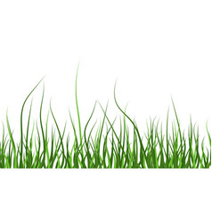multicolor green grass seamless pattern from left vector image