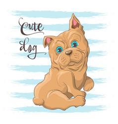 postcard a cute little dog bulldog vector image