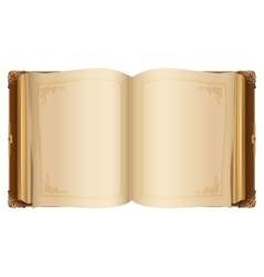 Retro open book with blank pages vector image
