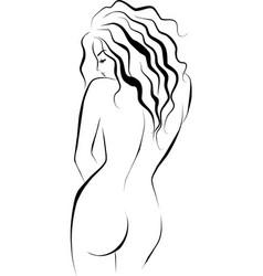 beautiful female body vector image