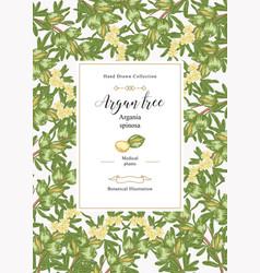 Argan tree argania spinosa background colorful vector