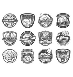 basketball ball basket player sport icons vector image